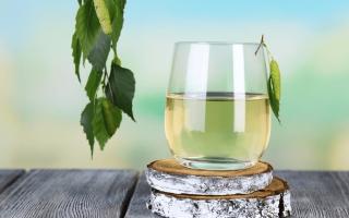 Почему весной у берёз и клёнов сок сладкий?